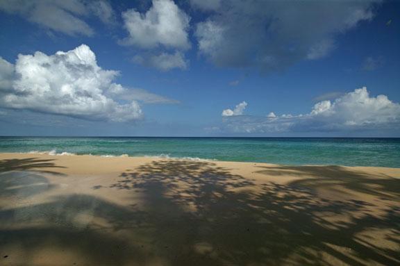 Un plage pour vous tout seul