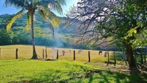 Zapote_de_Nicoya,_Guanacaste,_Costa_Rica._-_panoramio