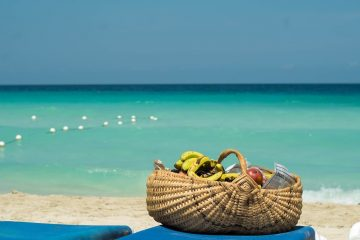 Sea Holiday Basket Vacation Fruits Holidays