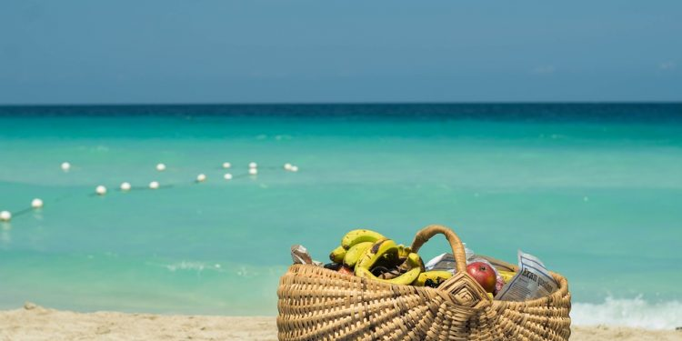 Sea Holiday Basket Vacation Fruits Holidays